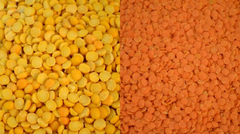 Split Yellow Peas and Red Lentils