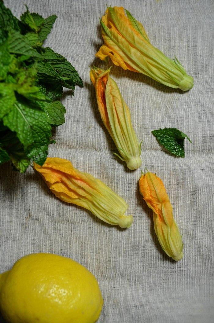 zucchini flowers4-0711