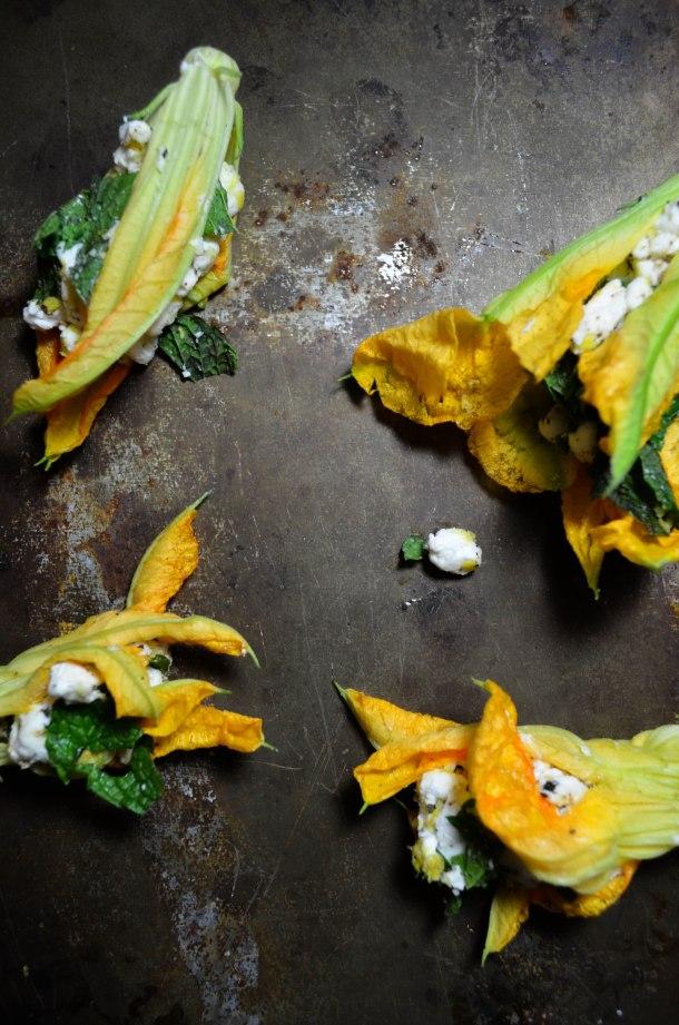 zucchini flowers6-0716