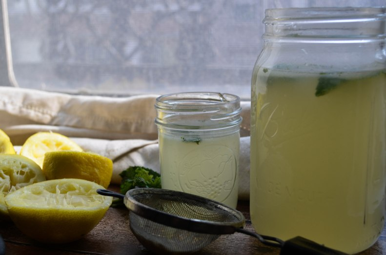 fresh squeezed lemonade2 (1 of 1)