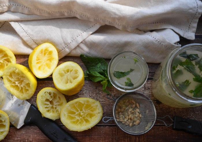 fresh squeezed lemonade3 (1 of 1)