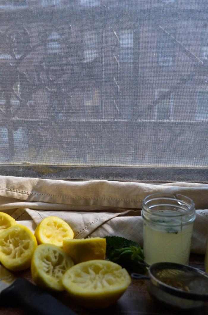 fresh squeezed lemonade4 (1 of 1)
