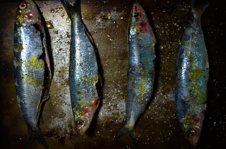 grilled sardines (1 of 1)