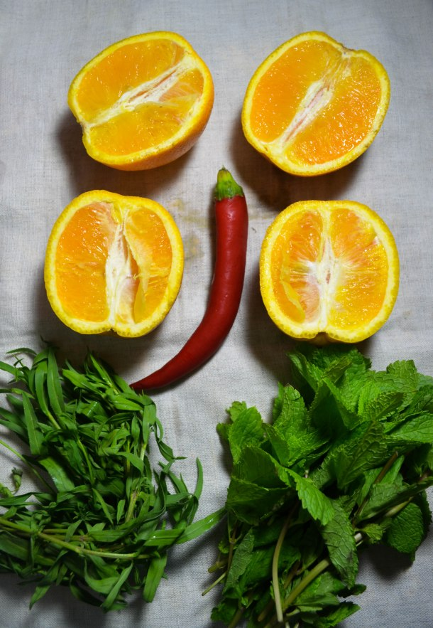 orange herb salsa (1 of 1)