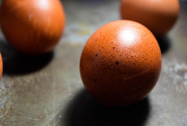 eggs (1 of 1)
