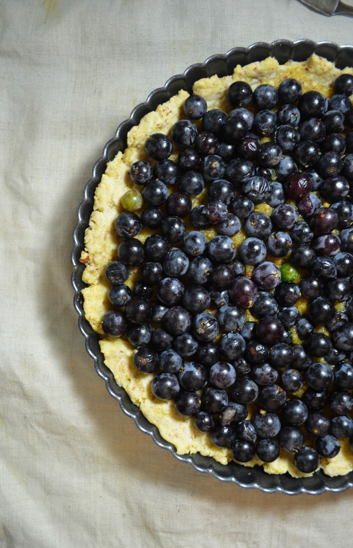 grape tart1 (1 of 1)