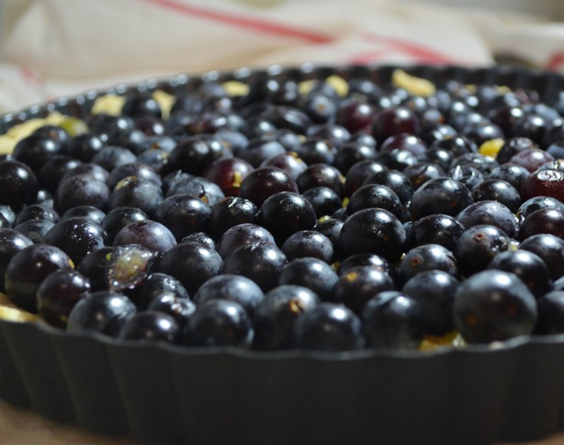grape tart2 (1 of 1)