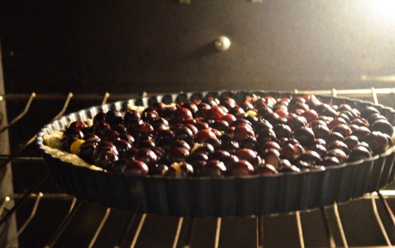 grape tartoven (1 of 1)