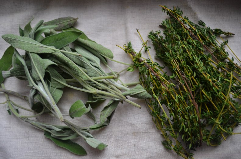herbs (1 of 1)