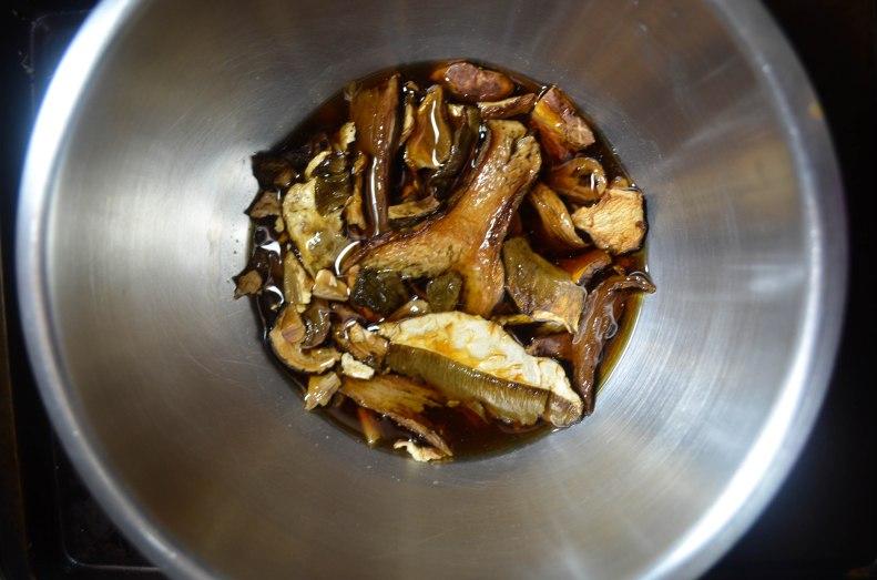 porcini mushrooms (1 of 1)