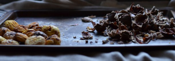 roasted chestnuts  (1 of 1)